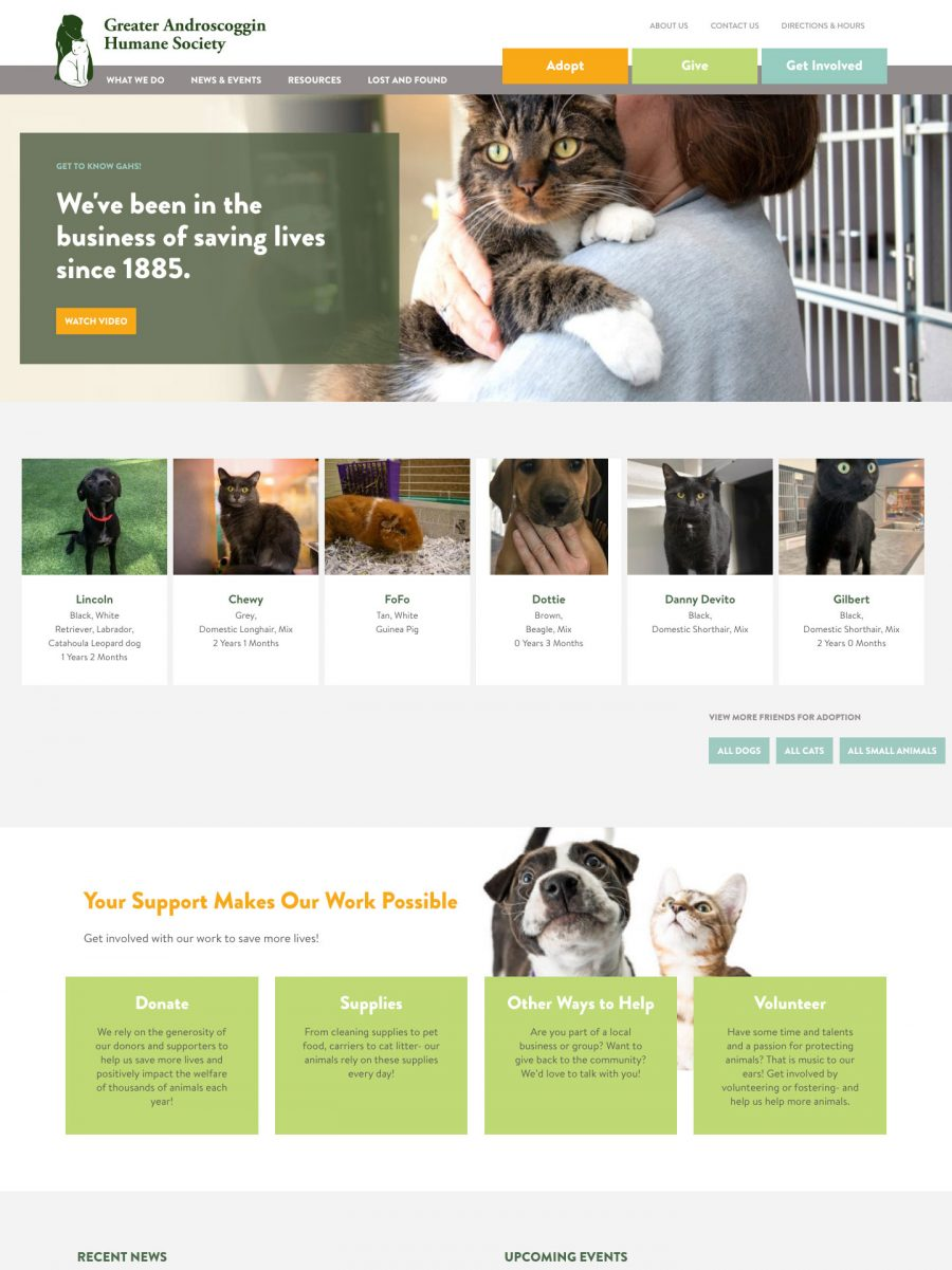 Greater Androscoggin Humane Society Homepage